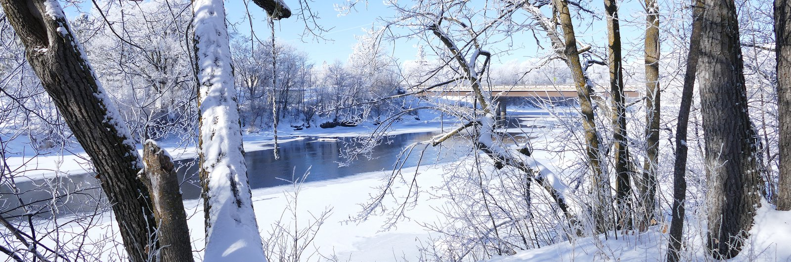 Winter in Thief River Falls