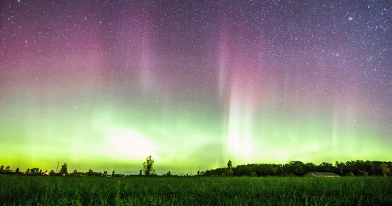 Thief River Falls Northern Lights