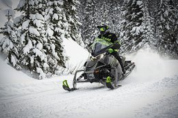 Arctic Cat Snow 2020